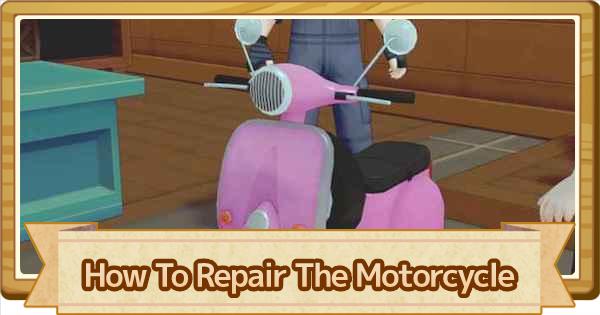 Motorcycle Repair Guide