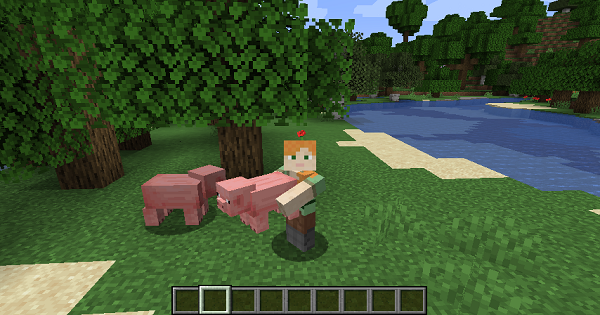 Carry On - Carry Villagers, Config & Mod Details