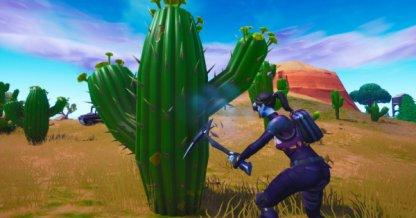 Destroy Cacti in the Desert Staged Challenge (Week 3)